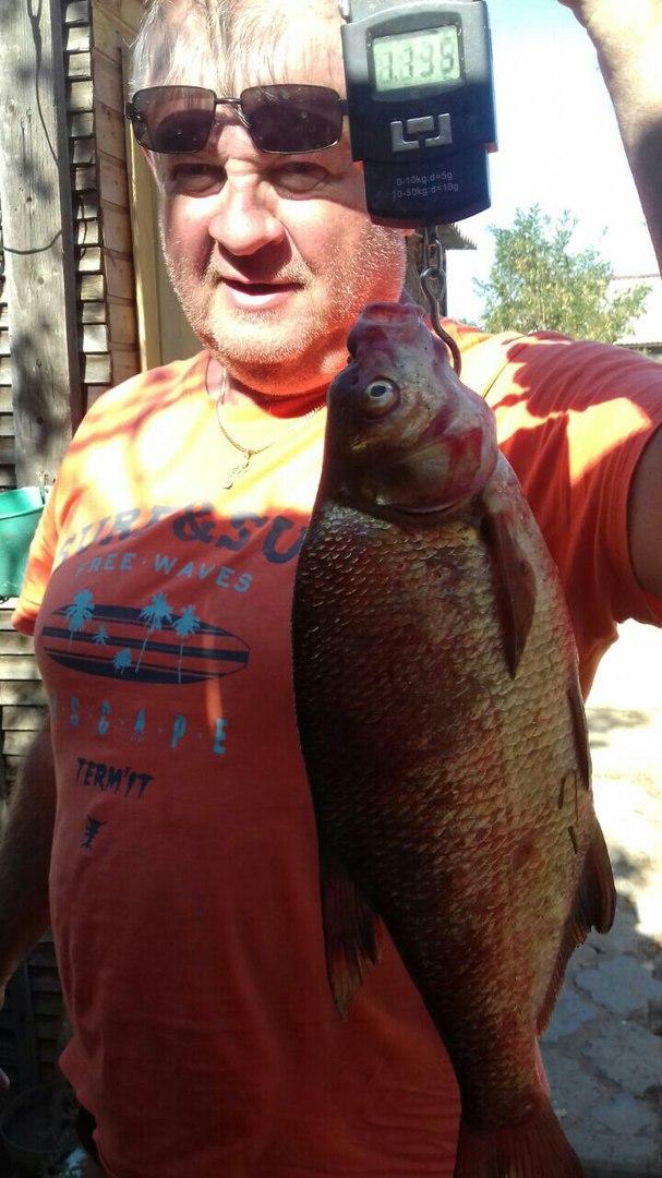 рыбалка, астрахань, алимовский плес